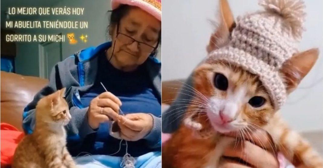 vovó tricota gorro gato vídeo