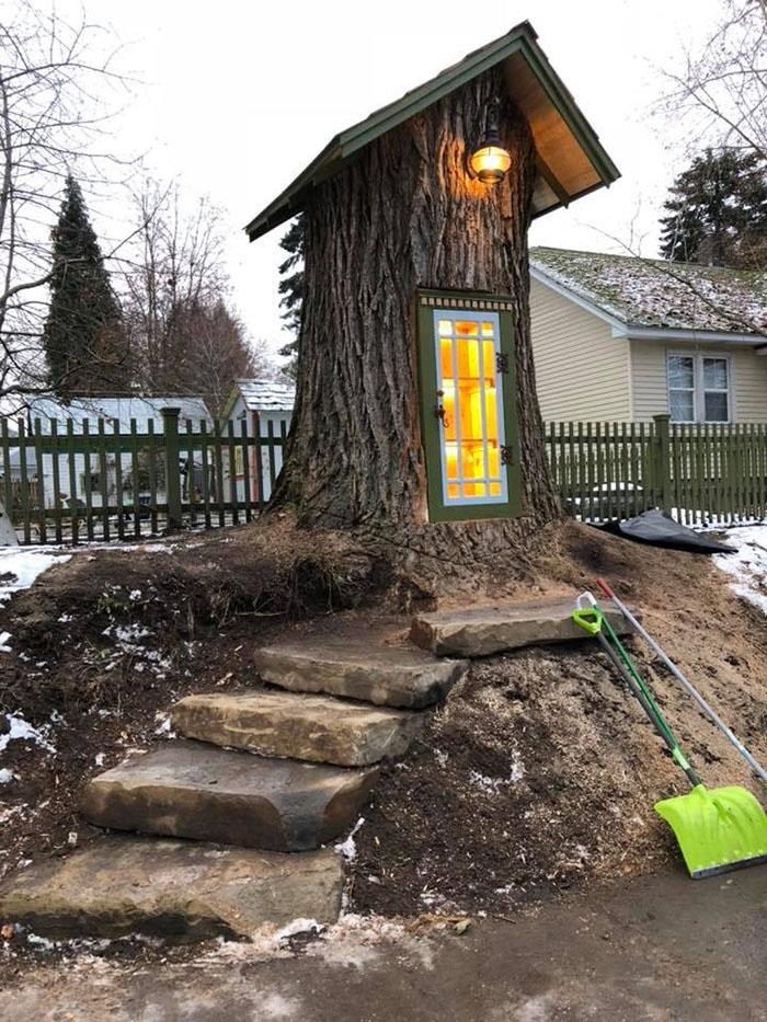 mulher transforma árvore em pequena biblioteca