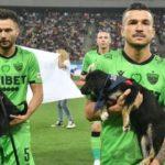 Para promover adoção, jogadores de futebol irão levar cães abandonados a campo antes das partidas