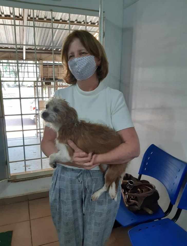 mulher acolhe cadela desnutrida em terreno baldio