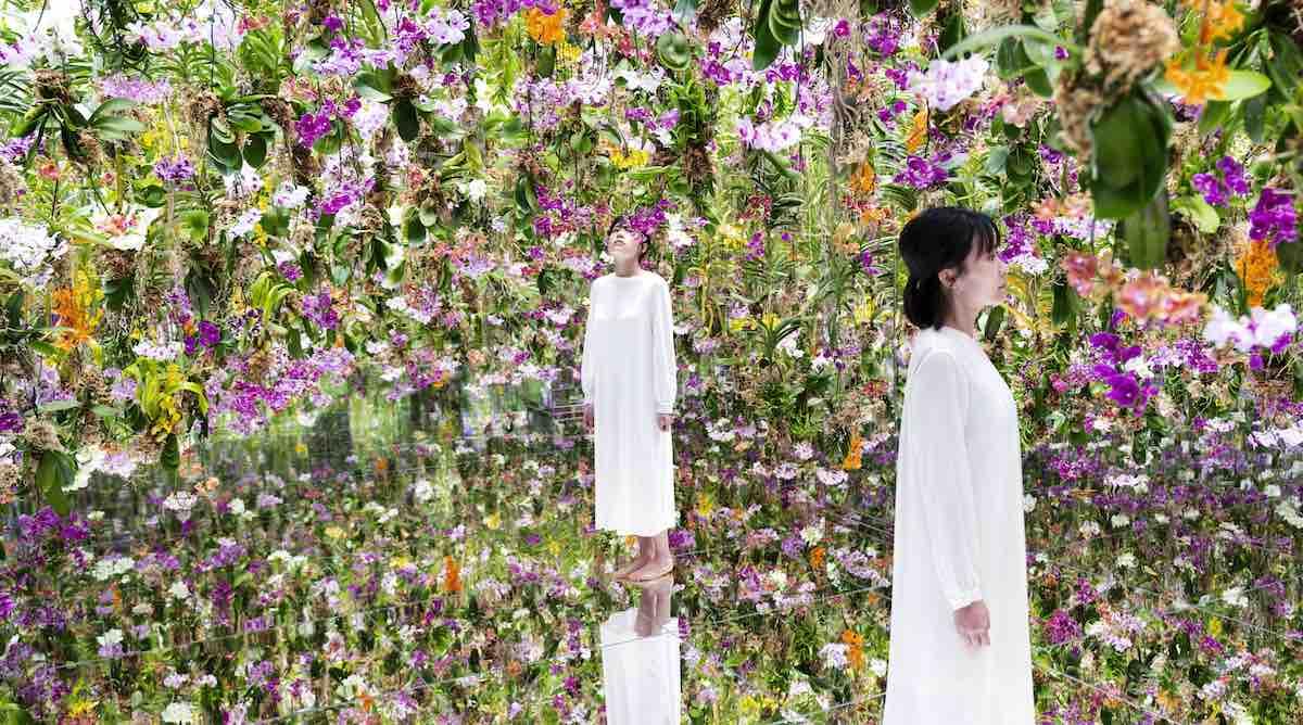 jardim de flores flutuantes de tóquio