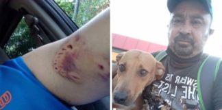 homem mordido por cadela agora alimenta ela todos os dias